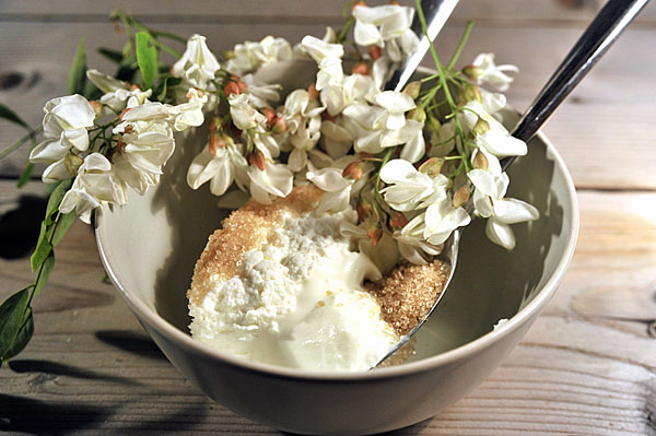 ricotta_robinia_ingredienti